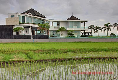 Bali villa in rice fields